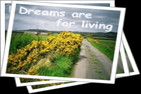 dreamsareforliving